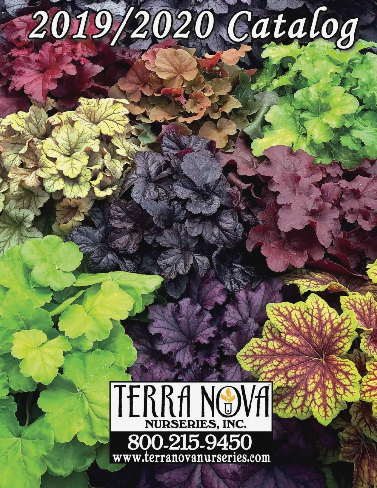 TERRA NOVA® Nurseries, Inc. 2019/2020 Catalog