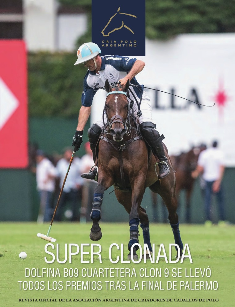 Revista Raza Polo Argentino RevistaAACCPNº31