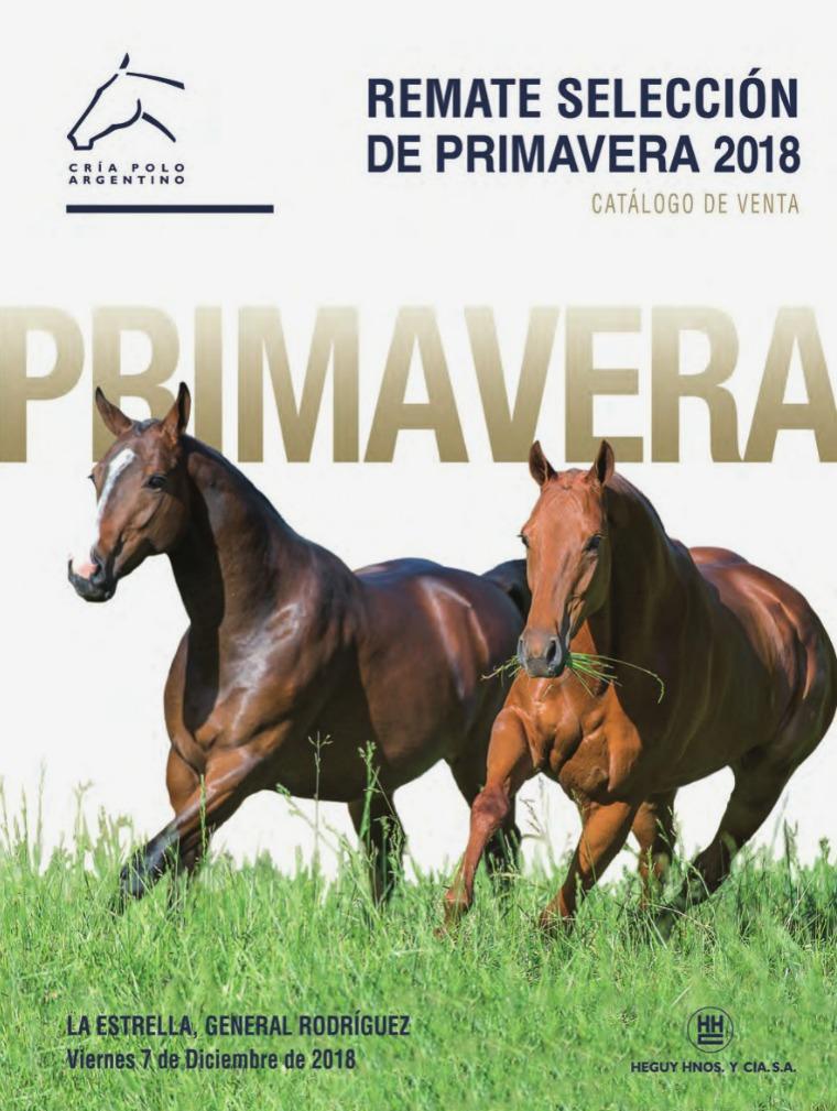 Catálogos 2019 AACCP RematePrimavera18