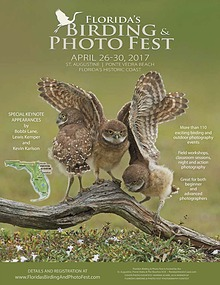Florida's Birding & Photo Fest official guide