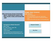 Growth Of Utility-Scale Energy Storage Technologies Market 2016 - 202
