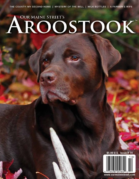 Our Maine Street's Aroostook Issue 14 : Fall 2012