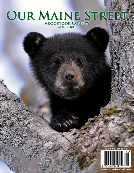 Our Maine Street's Aroostook Issue 8 : Spring 2011