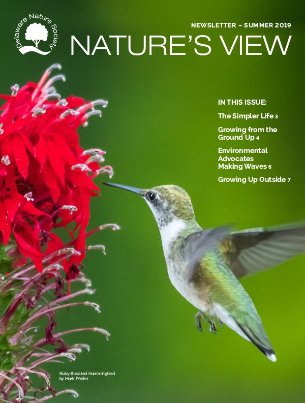 Delaware Nature Society Program Guide and Newsletter Summer 2019