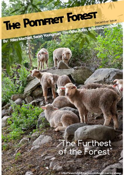 The Pomfret Forest: The Furthest Forest December 2014