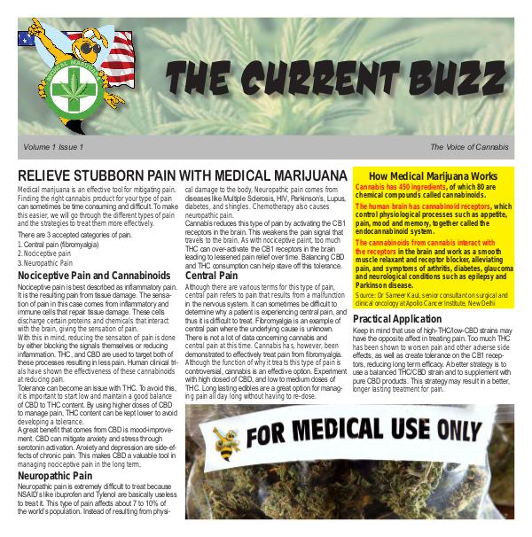 The Current Buzz Paper