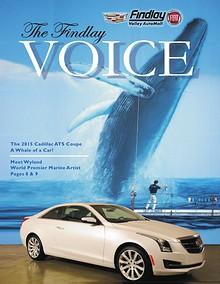 Findlay Voice
