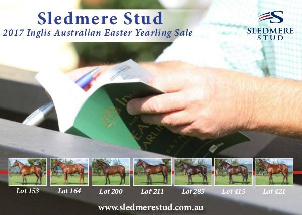 Sledmere Stud - 2017 Inglis Australian Easter Yearling Sale 1