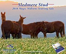 Sledmere Stud - 2018 Magic Millions Yearling Sale Preview