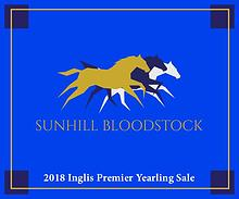 Sunhill Bloodstock: 2018 Inglis Premier Yearling Sale