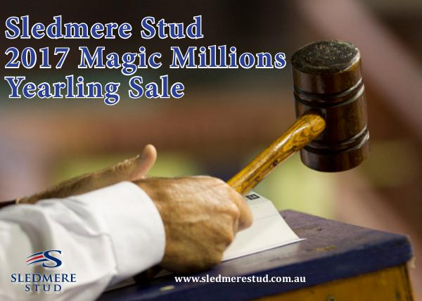 Sledmere Stud 2017 Magic Millions Yearling Sale January 2017