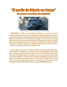 """""""El gorila de Odzala en riesgo"""" Un género en peligro de extinción """"El gorila de Odzala en riesgo"""" Un género en peligro de extinción"""