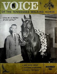 1965-Voice Of The Tennessee Walking Horse