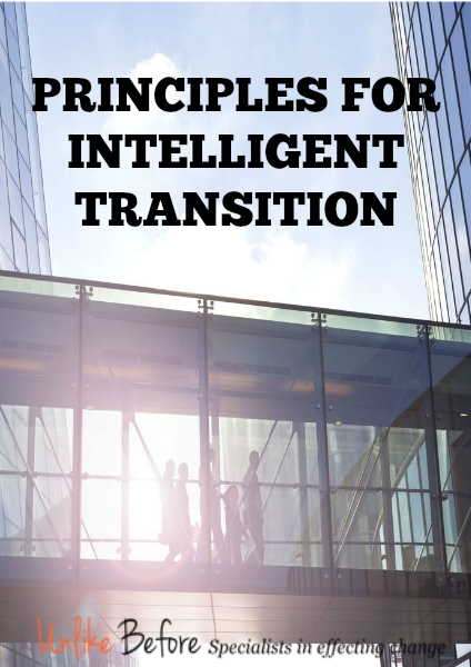 Principles for Intelligent Transition - Whitepaper