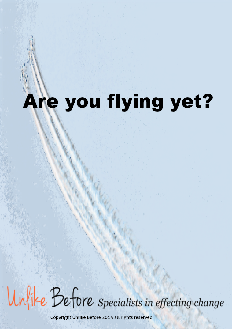 Are you flying yet? E-Book
