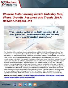 Chinese Puller Locking Buckle Industry Size, Share, Growth, 2017