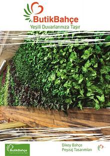 Yeşili  Duvarlarınıza Taşır..!