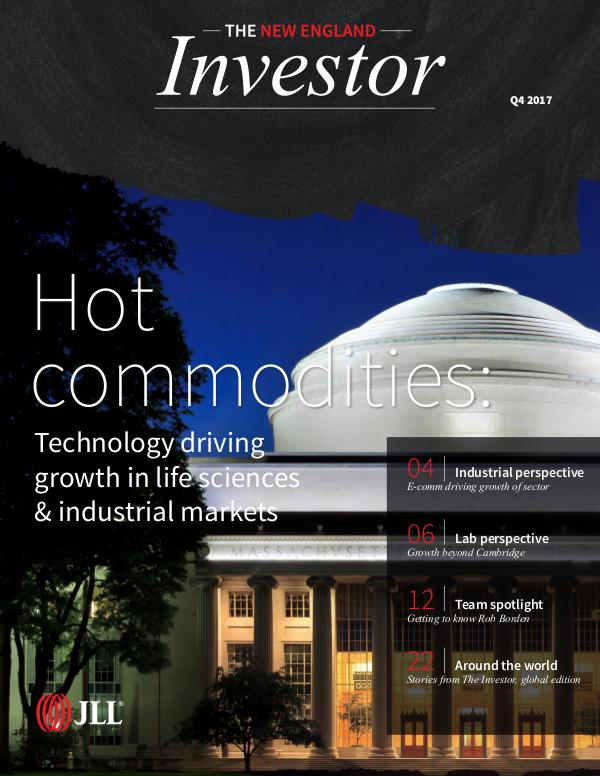 *The New England Investor- Digital Issue 04