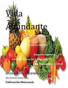 PPYDEFATA publicaciones,producciones y distribuciones efata junio de 2012