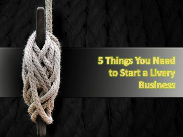 5 Things You Need to Start a Livery Business 5 Things You Need to Start a Livery Business