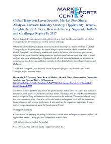 Transport Layer Security Market Share, Supply And Consumption To 2017