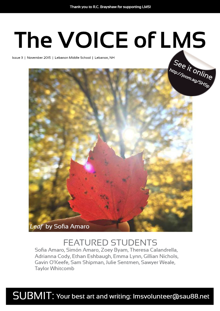 The VOICE of LMS Issue 3 • November 2015