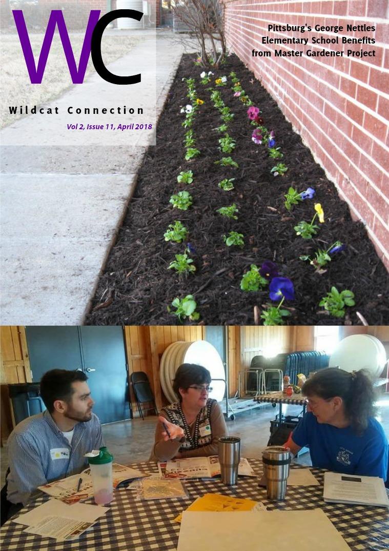 Wildcat Connection April 2018