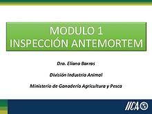 Modulo 1_Unidad tematica 1_INSPECCION ANTE MORTEM