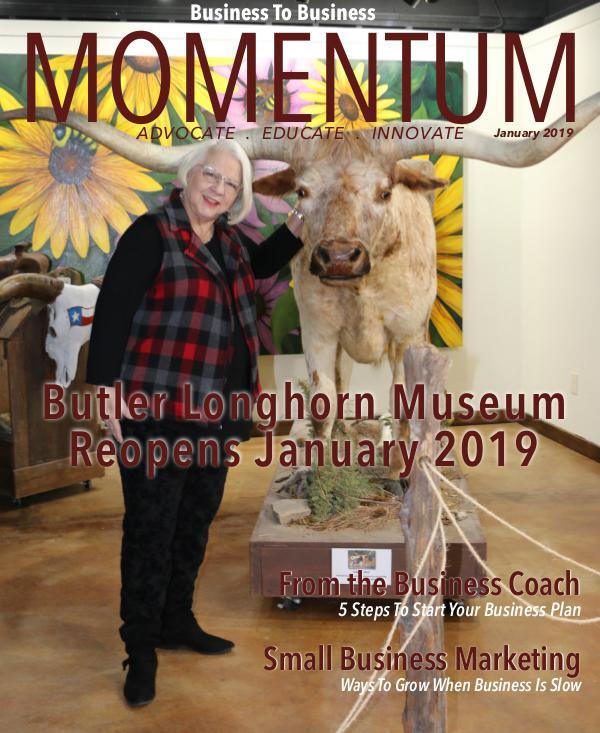 MOMENTUM January 2019