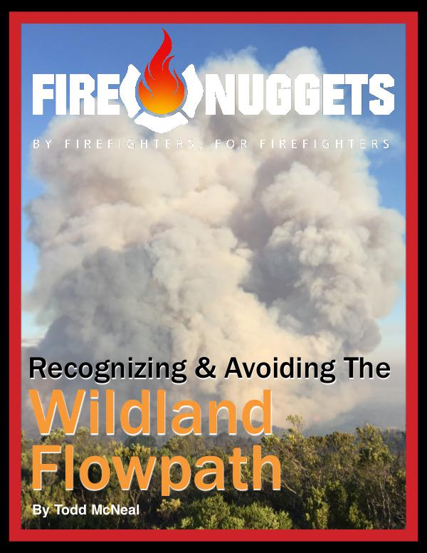 FireNuggets 2017 March