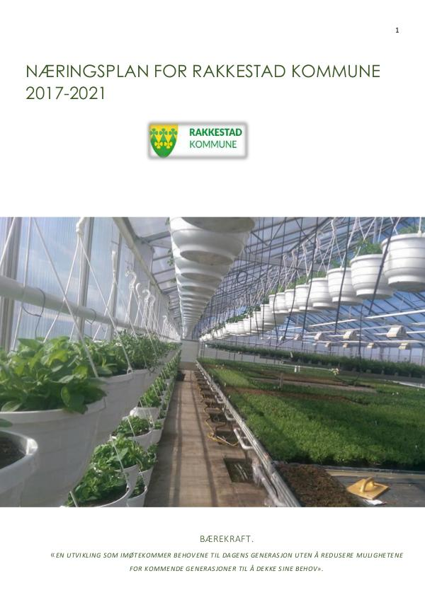 RNR MAGASIN Rakkestad - Strategisk Næringsplan