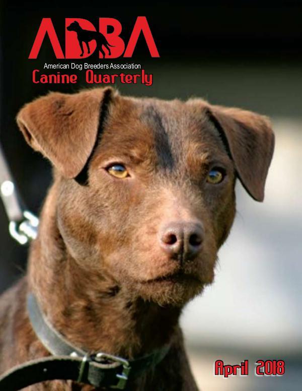 Canine Quarterly - ADBA CQ April 18