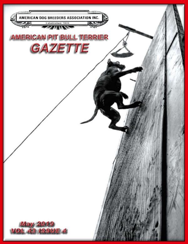 Volume 43 Issue 4