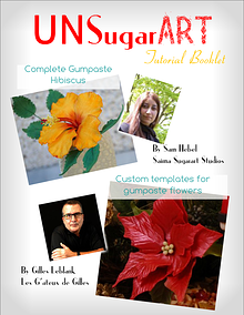 UNSA Magazine