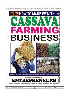 HOW TO MAKE WEALTH IN CASSAVA FARMING BUSINESS