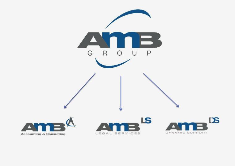 AMB GROUP Noviembre 2015