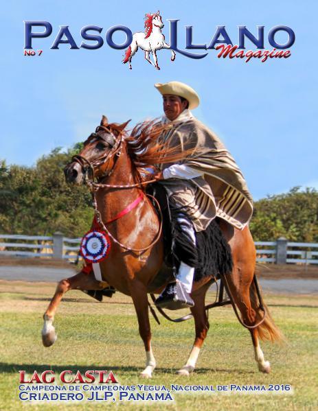 Paso Llano Magazine #7