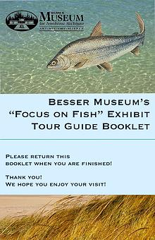 Focus on Fish Gallery Guide
