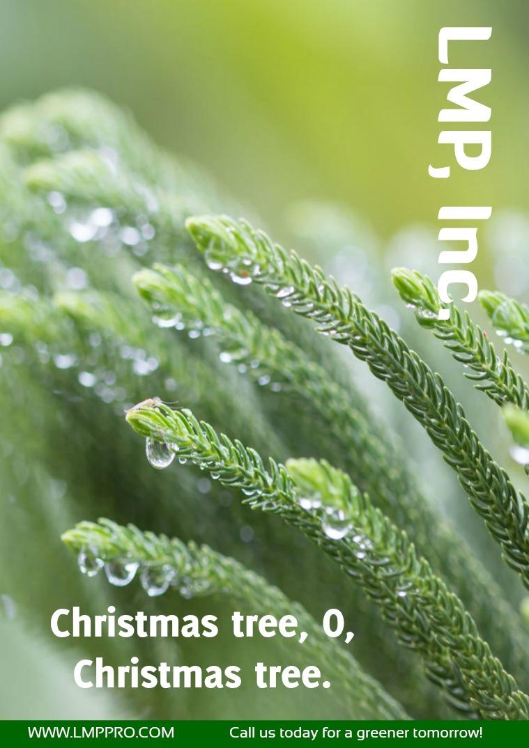 Issue 6  December 2016