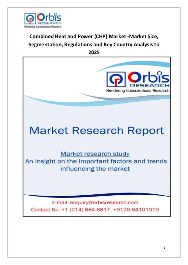Industry Analysis Combined Heat and Power (CHP) Market 2025 Forecast