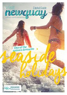Newquay Guide 2016