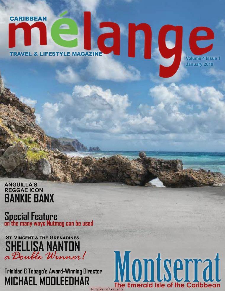 Mélange Travel & Lifestyle Magazine January 2019