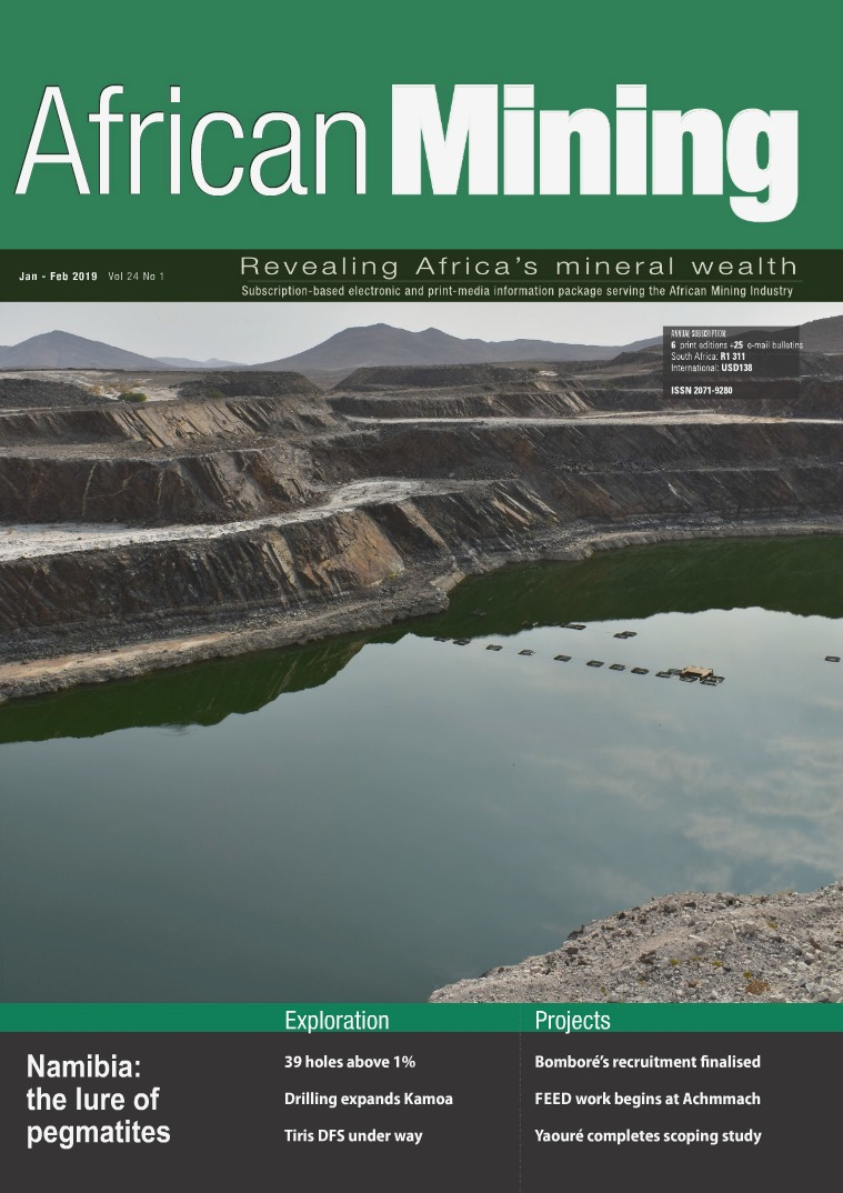 African Mining January - February 2019