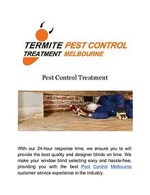Termite Pest Control Treatment Melbourne