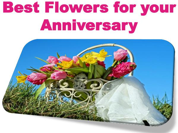 Best Flowers for your Anniversary 1