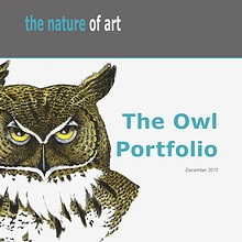 The Nature of ART - OWLS
