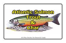 Art's Atlantic Salmon, Trout & Char Prints