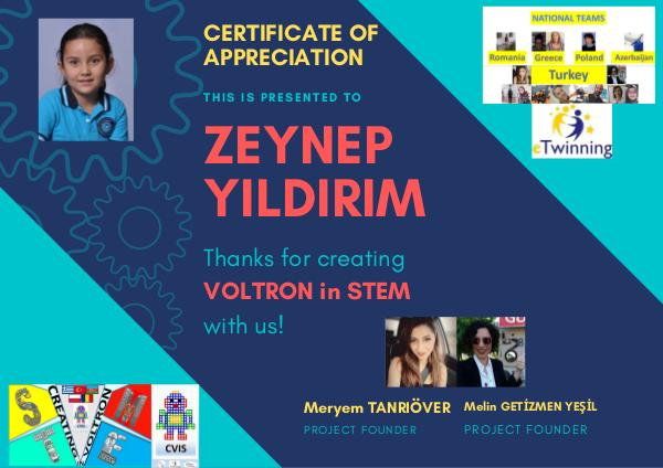 VOLTRON CERTIFICATE OF MY STUDENTS ÖĞRENCİLERİM İÇİN Votron sertifika