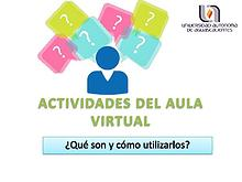 Actividad del aula virtual