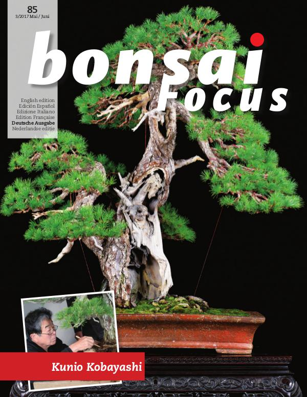 BONSAI FOCUS - Deutsch 2017-3